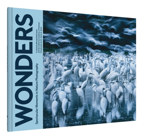 Wonders-3D cover